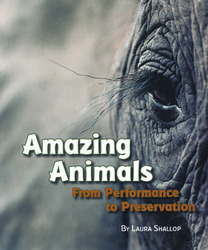 Explore More Grade 6: (Level X) Amazing Animals: From Performance to Preservation, 6-pack