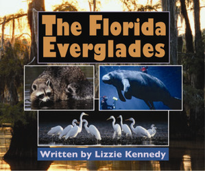 Gear Up, (Level N) The Florida Everglades, 6-pack
