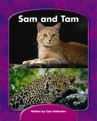 Wright Skills, Sam and Tam Decodable, Grade K