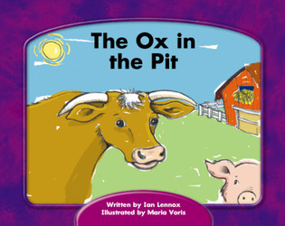 Wright Skills, The Ox in the Pit 6-pack
