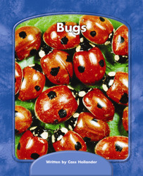 Wright Skills, Grade PreK-3,  Bugs 6-pack