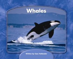 Wright Skills, Grade PreK-3,  Whales 6-pack