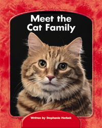 Wright Skills, Grade PreK-3,  Meet the Cat Family 6-pack