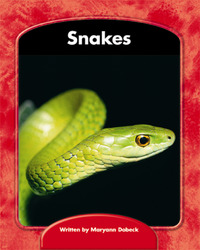 Wright Skills, Snakes 6-pack