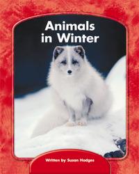 Wright Skills, Animals in Winter 6-pack