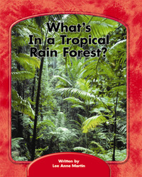 Wright Skills, What's in a Tropical Rain Forest? 6-pack