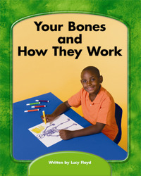 Wright Skills, Grade PreK-3,  Your Bones and How They Work 6-pack
