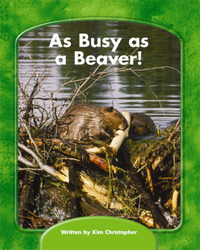 Wright Skills, Grade PreK-3,  As Busy as a Beaver!, 6-pack