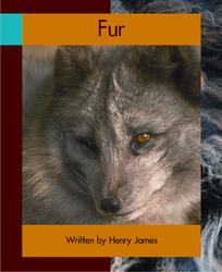 Springboard, Fur (Level I) 6-pack