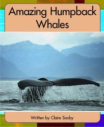 Springboard, Amazing Humpback Whales (Level L) 6-pack