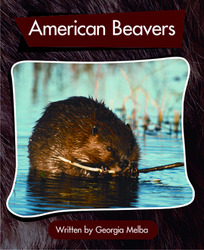 Springboard, American Beavers (Level L) 6-pack