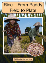 Springboard, Rice-From Paddy Field to Plate (Level O) 6-pack