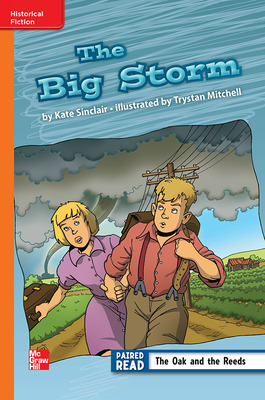 Reading Wonders Leveled Reader The Big Storm: Approaching Unit 6 Week 2 Grade 3