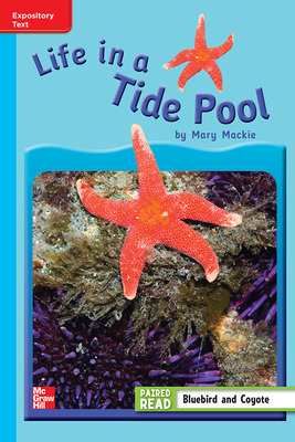 Reading Wonders Leveled Reader Life in a Tide Pool: On-Level Unit 4 Week 3 Grade 3