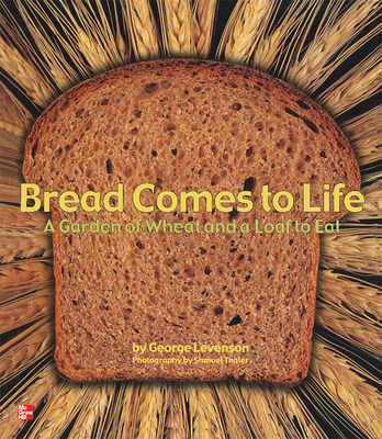 Reading Wonders Literature Big Book: Bread Comes to Life Grade K