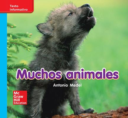 Lectura Maravillas Leveled Reader Muchos animales: On-Level Unit 7 Week 1 Grade K