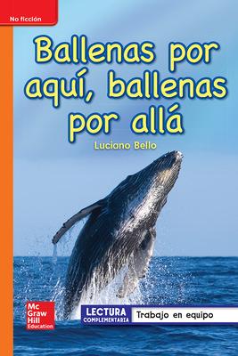 Lectura Maravillas Leveled Reader Ballenas por aquí, ballenas por allá: Approaching Unit 4 Week 2 Grade 1