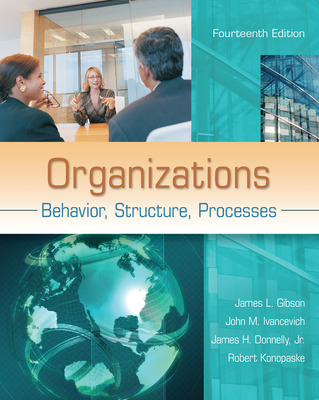 Premium Content Online Access for Organizations: Behavior, Structure, Processes
