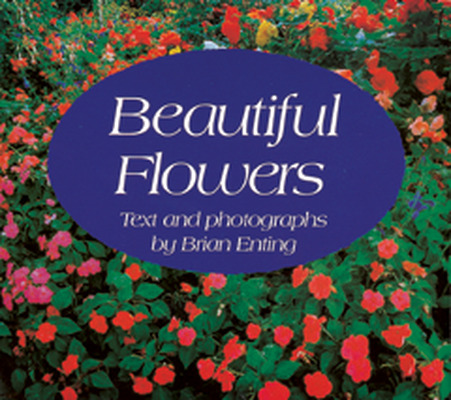 Wonder World, (Level B) Beautiful Flowers 6-pack