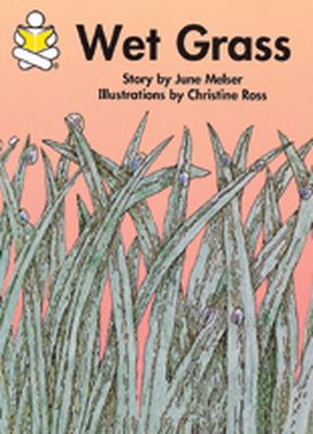 Story Box, Wet Grass