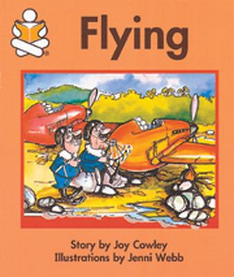 Story Box, (Level E) Flying