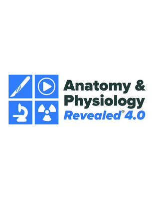 Standalone Online Access for Anatomy and Physiology Revealed V. 4.0 Online 1yr Student Edition