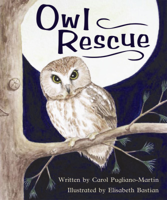 Gear Up, (Level E) Owl Rescue, 6-pack