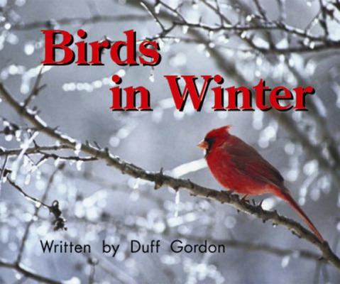 Gear Up, (Level C) Birds in Winter, 6-pack
