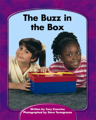 Wright Skills, The Buzz in the Box 6-pack