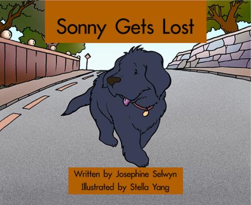 Springboard, Sonny Gets Lost (Level G) 6-pack