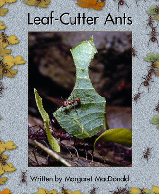 Springboard, Leaf Cutter Ants (Level L) 6-pack