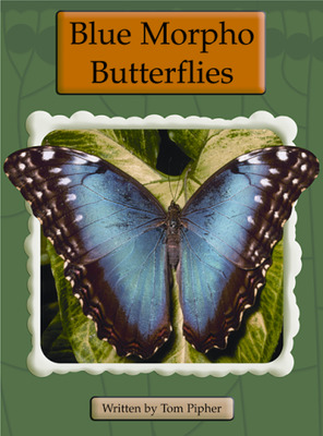 Springboard, Blue Morpho Butterflies (Level O) 6-pack