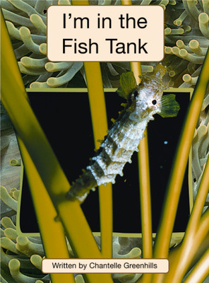 Springboard, I'm in the Fish Tank (Level Q) 6-pack