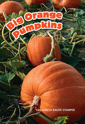 Science, A Closer Look, Big Orange Pumpkins (6 copies)