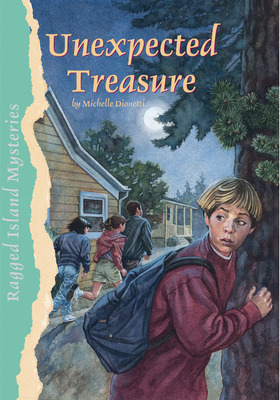 Ragged Island Mysteries, Unexpected Treasure, 6-pack