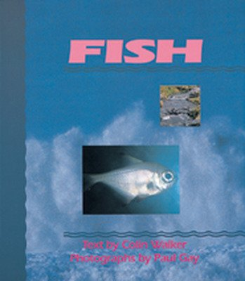 Wonder World, (Level E) Fish Big Book
