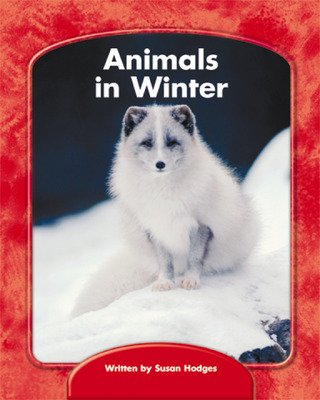 Wright Skills, Animals in Winter 6-pack
