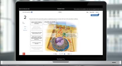 critical-thinking-app-3