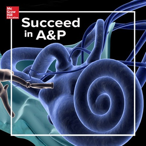 Anatomy Physiology Mcgraw Hill Higher Education